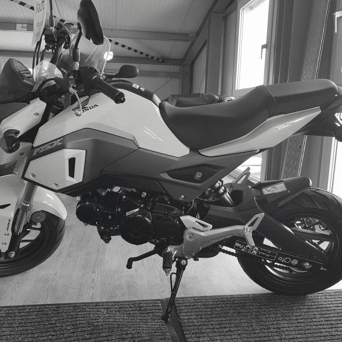 Honda MSX 125 ccm   Der Einstieg in die Motorradwelt. Für Klasse A1